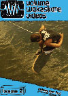 Volume Wakeskate Videos Issue #2 - DVD